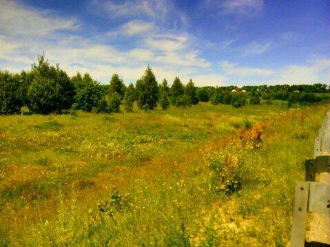 Продажа земельного участка 1 га возле д.Крутец Богородского р-на - Фото 2