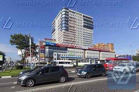 Сдам офис 236 кв.м, бизнес-центр класса B+ «cherrytower» - Фото 1
