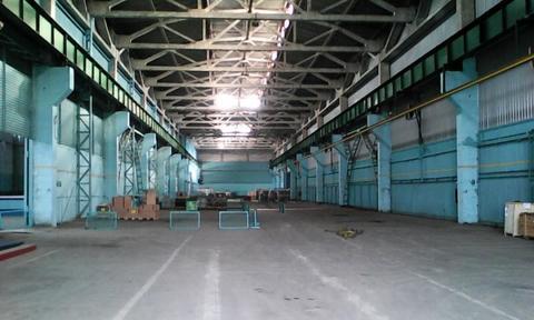 Сдам в аренду теплый склад-производство класса А - Фото 1