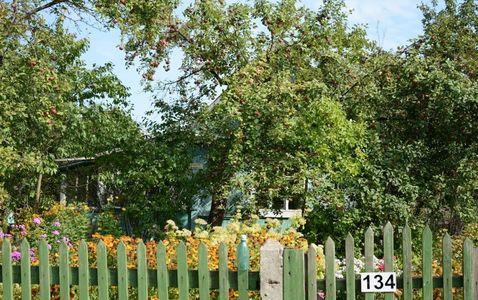 Дача в Щербинке - Фото 4