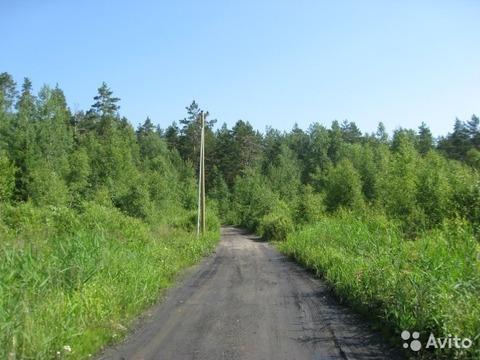 Ступинский район , Ольгино - Фото 1