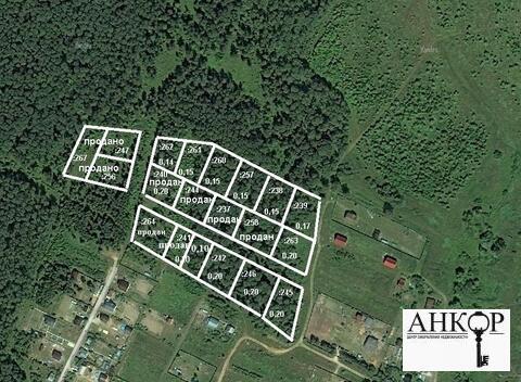 Земельный участок 15 соток лпх с взрослыми березами д. Дулово - Фото 1