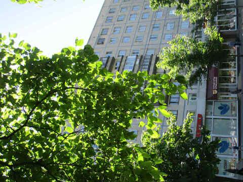 Продается просторная 2-к квартира вблизи парков Сосновка и Муринский - Фото 2