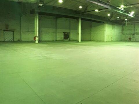 Сдам производственное помещение 2380 кв.м, м. Комендантский проспект - Фото 5