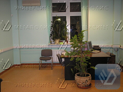 Сдам офис 77 кв.м, Зоологическая ул, д. 2 - Фото 3