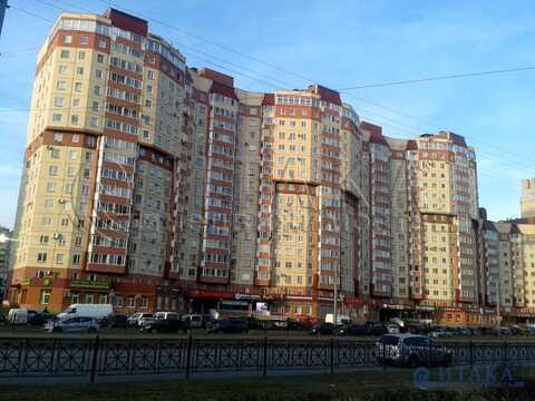 Продажа псн, м. Старая Деревня, Ул. Савушкина - Фото 3