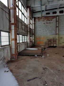 Сдам складское помещение 1150 кв.м, м. Старая деревня - Фото 3