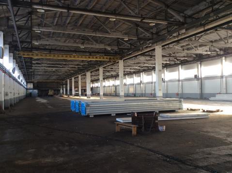 Продам складской комплекс 7500 кв.м. - Фото 5
