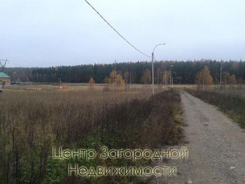 Участок, Киевское ш, 38 км от МКАД, Зверево, В деревне. Большой . - Фото 4
