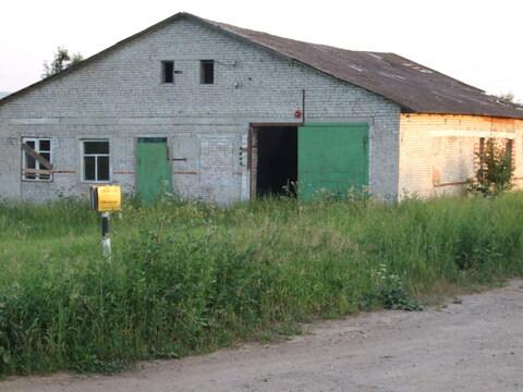 Кольчугинский р-н, с. Ильинское