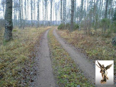 Продается участок у реки Булатная - Фото 2
