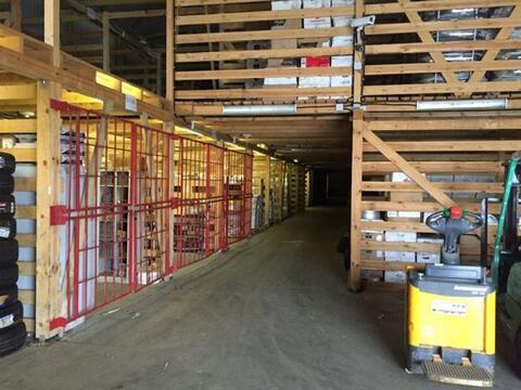 Сдам складское помещение 1500 кв.м, м. Звездная - Фото 5