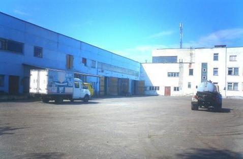 Молокозавод 12 000 м2 в Курской обл. Щигры, ул. Лазарева 1 - Фото 5