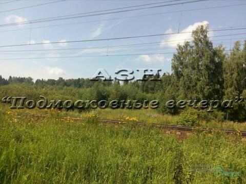 Дмитровское ш. 28 км от МКАД, Большая Черная, Участок 150 сот. - Фото 4
