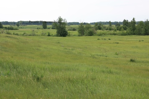 Продается земельный участок в Пышминском районе Свердловской области - Фото 4