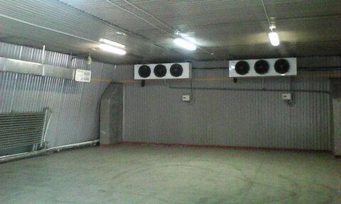 Сдам в аренду склад-холодильник 167 м.кв. - Фото 1