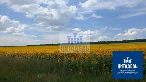 Объект 538693 - Фото 2