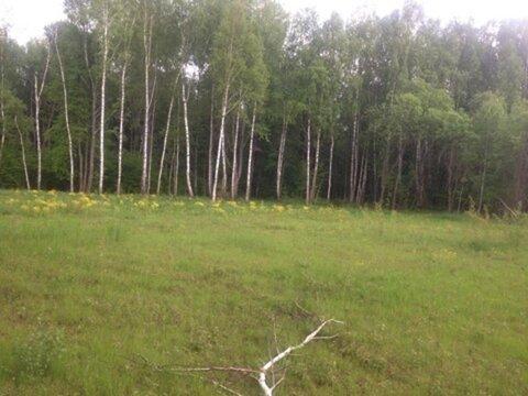 Сад- огород в Бойково , ж\д Горьковское - Фото 2