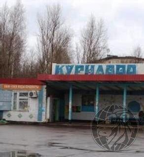 Участок 9 соток СНТ Курилово, Новая Москва - Фото 2