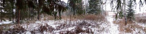 Продам: Земельный участок 10 сот, Верхний Тагил, Маяковского, 50 - Фото 4