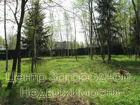 Дом, Минское ш, Можайское ш, Киевское ш, 45 км от МКАД, Кубинка, . - Фото 5