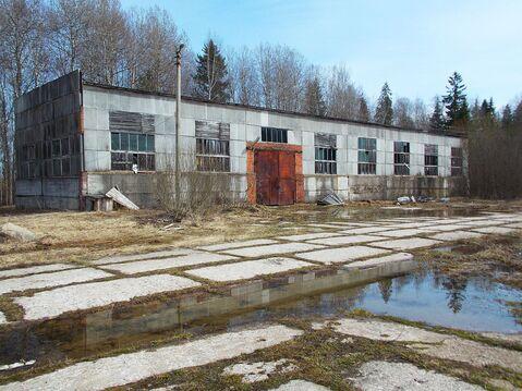Производственная база на участке 1,5 Га в г. Кинешма Ивановской обл. - Фото 1