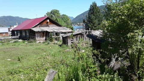Республика Алтай, с.Артыбаш (Телецкое озеро) - Фото 5