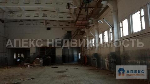 Продажа помещения пл. 1471 м2 под производство, пищевое производство, . - Фото 5