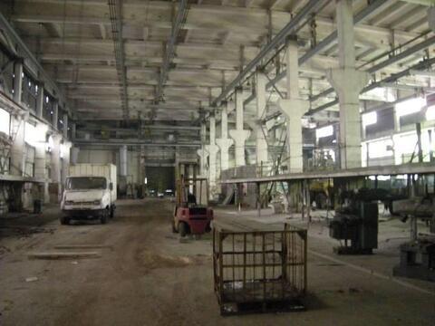 В аренду под склад 5918.4 м2, м. Тульская - Фото 5