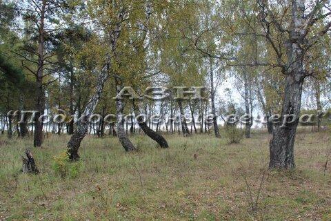 Симферопольское ш. 86 км от МКАД, Турово, Участок 12.5 сот. - Фото 2