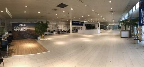 Сдам торговое помещение 300 м2 - Фото 4