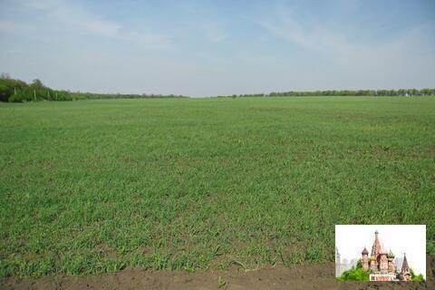 Продается участок 8,87 га в Ростовской области, Красносулинский р-н - Фото 2