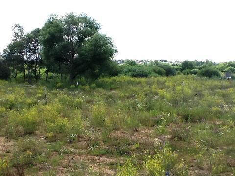 Земельный участок возле леса 9,5 соток д.Никульское (с.Остафьево) - Фото 2
