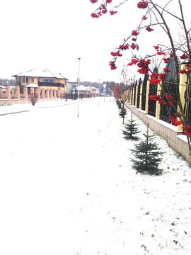 Продается участок. , Зименки д, коттеджный поселок Антоновка - Фото 3