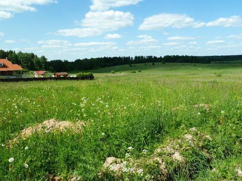 Продается участок 6,5 соток д. Сурмино, 45 км. от МКАД - Фото 3