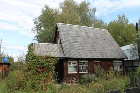 Резиденция настоящего грибника! - Фото 2
