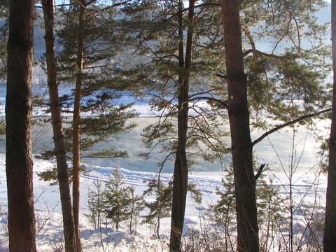 Коттедж на берегу р. Катунь - Фото 2