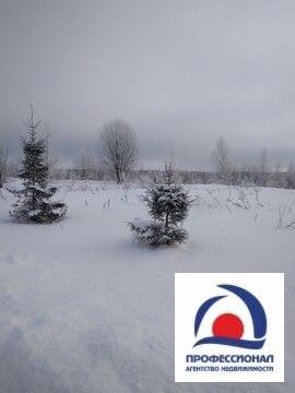 Продам зем.участок 20 соток в Ильинское - Фото 4