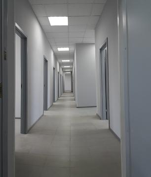 316 кв. м для вашего бизнеса - Фото 3