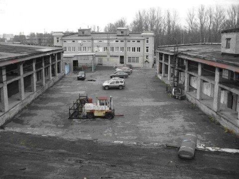Продам производственное помещение 5000 кв.м, м. Выборгская - Фото 3