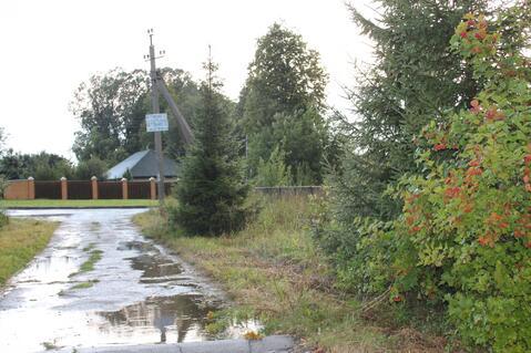 Продается большой участок с фундаментом под дом в деревне Голубино - Фото 5