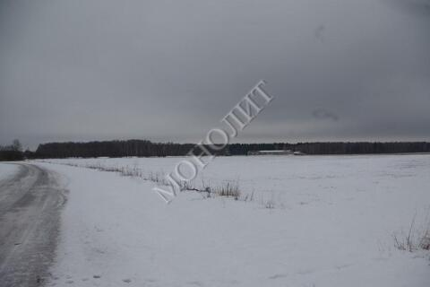 Земельный участок 12 гектаров. г. Москва, п. Щаповское, д. Овечкино - Фото 4