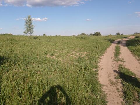Продается участок 1 Га сельхоз. назначения рядом с г. Истра - Фото 5
