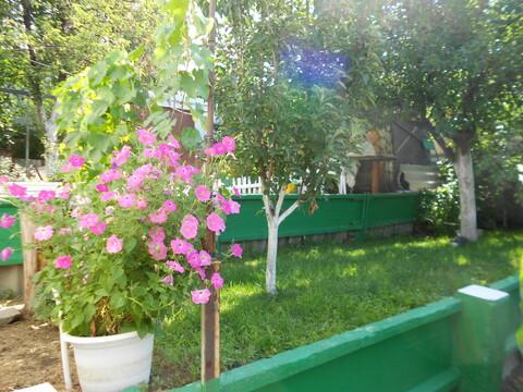 Приятная дача в мкр Сосенки ждет своего Покупателя - Фото 3