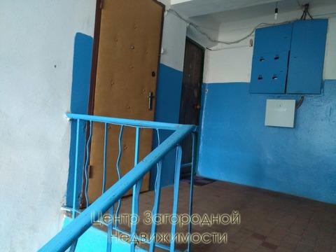 Трехкомнатная Квартира Область, улица Липицы, д.25, Аннино, до 50 мин. . - Фото 5