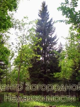 Участок, Дмитровское ш, Ярославское ш, 40 км от МКАД, Сазонки д. . - Фото 2