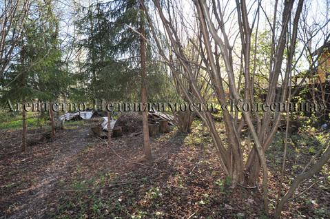 Ореховка. Лесной участок 20 соток с 2-этажным срубом дома, срубом бани - Фото 2