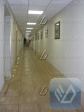Сдам офис 103 кв.м, Адмирала Макарова ул, д. 8 - Фото 3