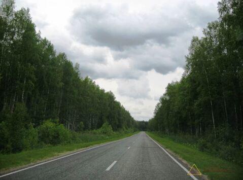 Земельный участок в Тверской области - Фото 2