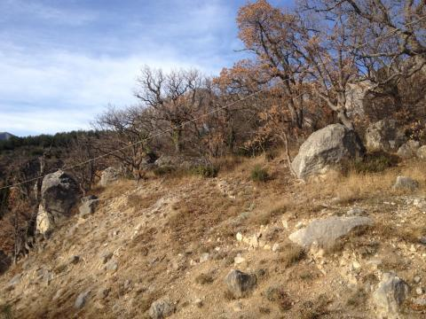 Участок с шикарной панорамой, среди сосен, ели и можжевела - Фото 5